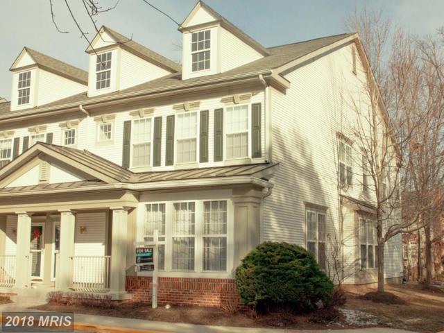 20272 Macglashan Terrace, Ashburn, VA 20147 (#LO10128377) :: Pearson Smith Realty