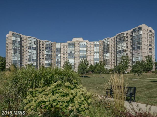 19365 Cypress Ridge Terrace #115, Leesburg, VA 20176 (#LO10128381) :: Pearson Smith Realty