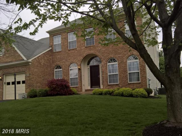 46874 Antioch Place, Sterling, VA 20164 (#LO10129157) :: The Belt Team