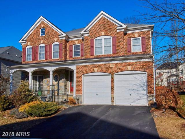 42100 Flowering Path Place, Aldie, VA 20105 (#LO10129350) :: Pearson Smith Realty