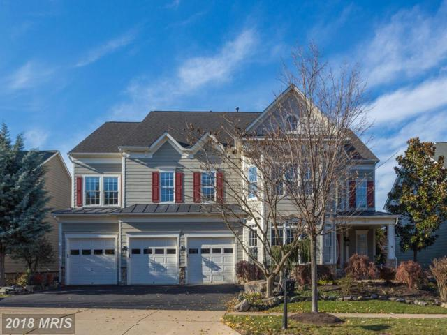 19247 Mill Site Place, Leesburg, VA 20176 (#LO10129353) :: Pearson Smith Realty