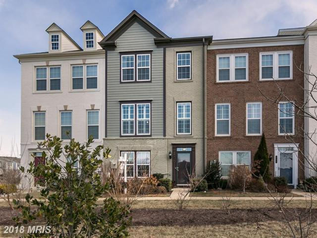 410 Wild Onion Terrace, Leesburg, VA 20175 (#LO10130224) :: Pearson Smith Realty
