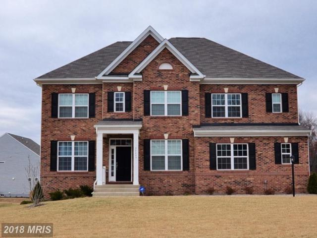 24409 Rock Pond Court, Aldie, VA 20105 (#LO10132317) :: Pearson Smith Realty