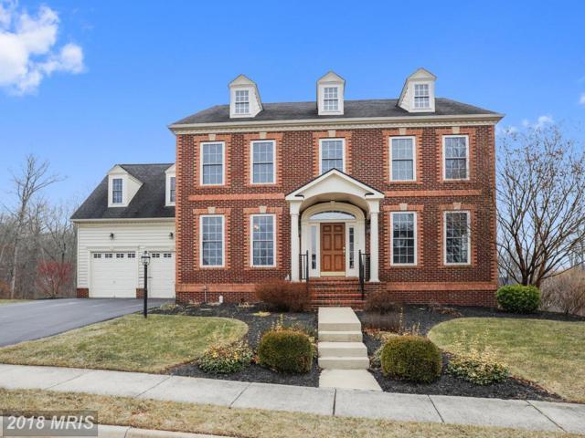 21050 Courtland Village Drive, Leesburg, VA 20175 (#LO10132753) :: Pearson Smith Realty