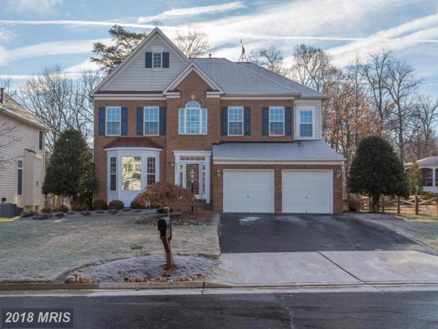 42917 Cattail Meadows Place, Broadlands, VA 20148 (#LO10132821) :: Pearson Smith Realty