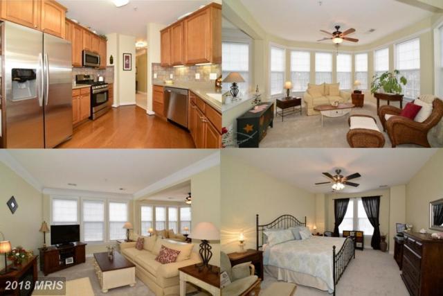 44475 Chamberlain Terrace #206, Ashburn, VA 20147 (#LO10132968) :: Pearson Smith Realty