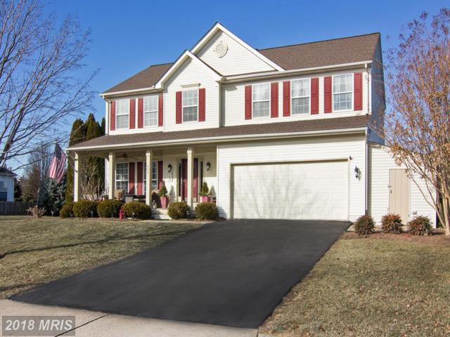 429 Crosman Court, Purcellville, VA 20132 (#LO10133190) :: LoCoMusings