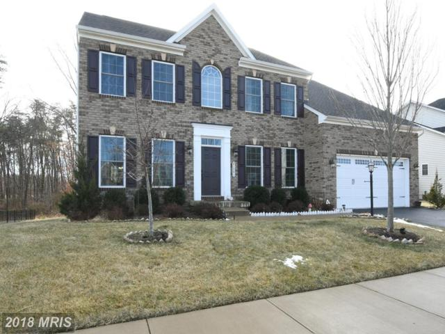41541 Arlington Oaks Drive, Aldie, VA 20105 (#LO10133307) :: Pearson Smith Realty