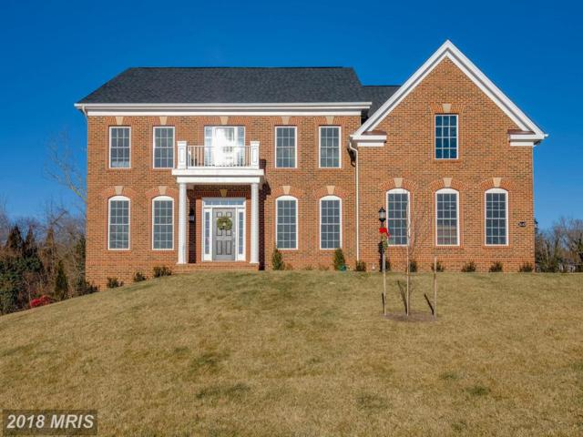 36478 Whispering Springs Court, Purcellville, VA 20132 (#LO10133439) :: LoCoMusings