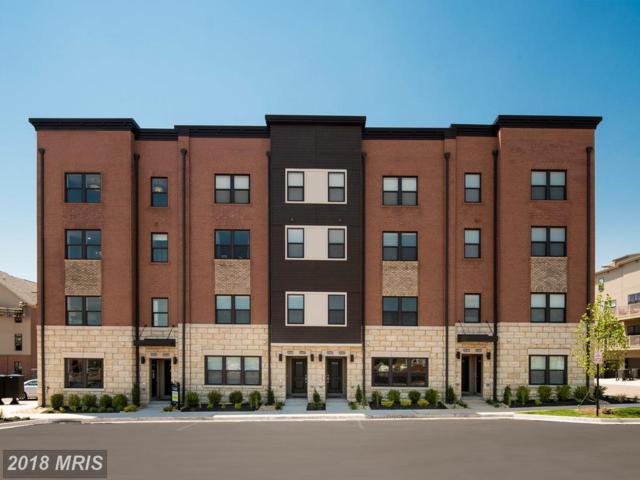 20516 Milbridge Terrace #78, Ashburn, VA 20147 (#LO10133470) :: LoCoMusings