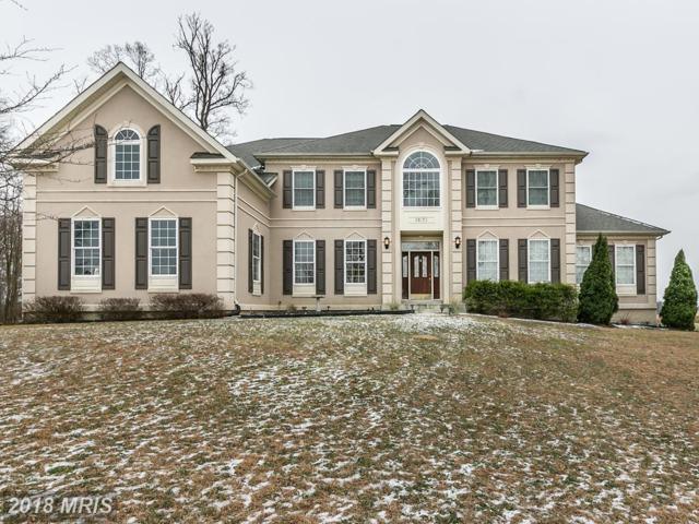 38173 Highland Farm Place, Purcellville, VA 20132 (#LO10133475) :: LoCoMusings