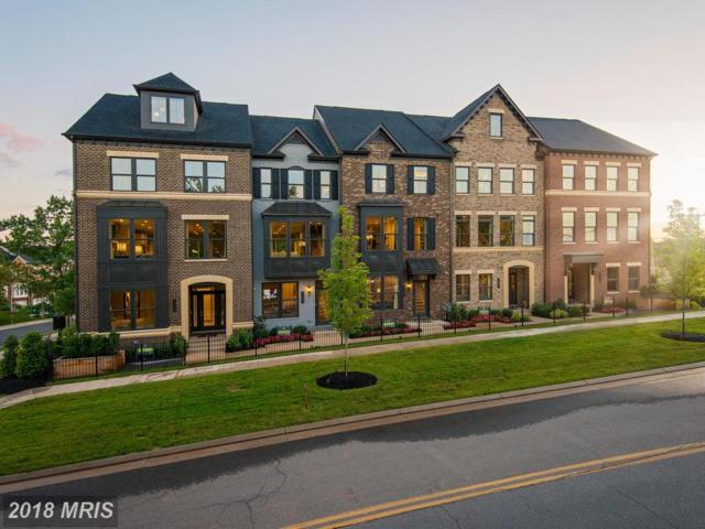 04 Ghazwa Square, Ashburn, VA 20148 (#LO10133507) :: Colgan Real Estate