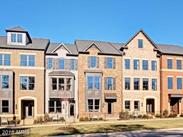 05 Ghazwa Square, Ashburn, VA 20148 (#LO10133521) :: Colgan Real Estate