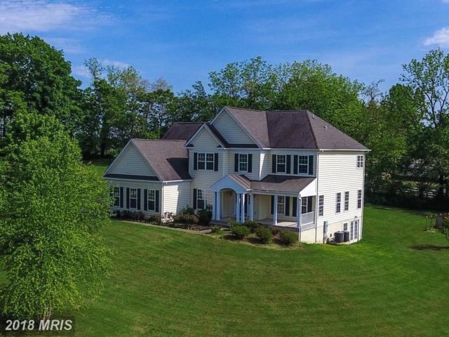37117 Elaine Place, Purcellville, VA 20132 (#LO10133565) :: Pearson Smith Realty