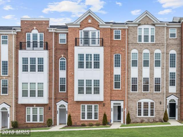 42729 Eildon Terrace, Ashburn, VA 20147 (#LO10133840) :: Colgan Real Estate