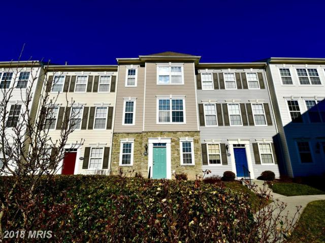 21811 Jarvis Square, Ashburn, VA 20147 (#LO10134402) :: Pearson Smith Realty