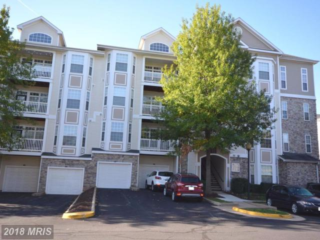 501 Sunset View Terrace SE #206, Leesburg, VA 20175 (#LO10134989) :: Bic DeCaro & Associates