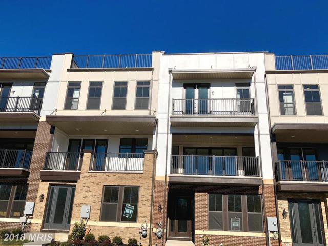 42365 Chapel Gate Terrace, Ashburn, VA 20148 (#LO10135321) :: Arlington Realty, Inc.