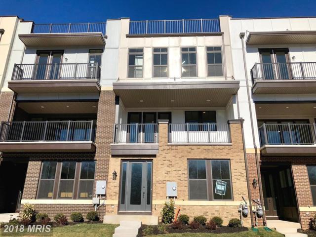 42363 Chapel Gate Terrace, Ashburn, VA 20148 (#LO10135388) :: Arlington Realty, Inc.