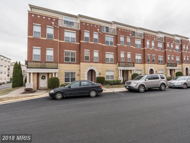 42643 Highgate Terrace, Ashburn, VA 20148 (#LO10135408) :: LoCoMusings