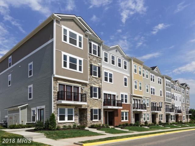 24676 Cable Mill Terrace, Stone Ridge, VA 20105 (#LO10135466) :: Arlington Realty, Inc.