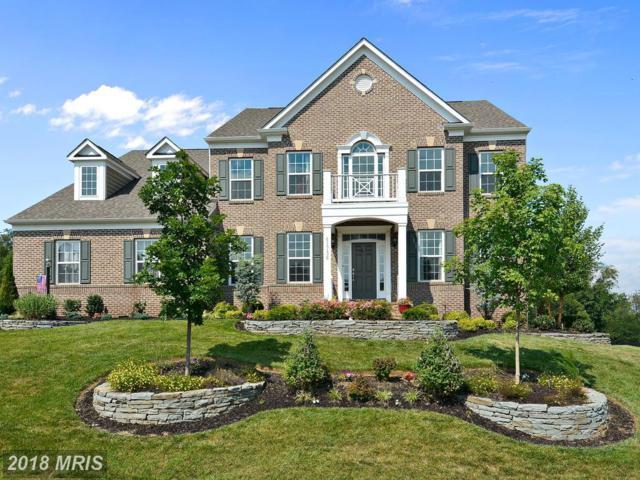 41736 Wakehurst Place, Leesburg, VA 20176 (#LO10135735) :: Arlington Realty, Inc.