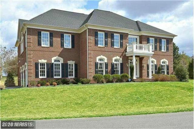 18270 Glen Oak Way, Leesburg, VA 20176 (#LO10135796) :: Bic DeCaro & Associates