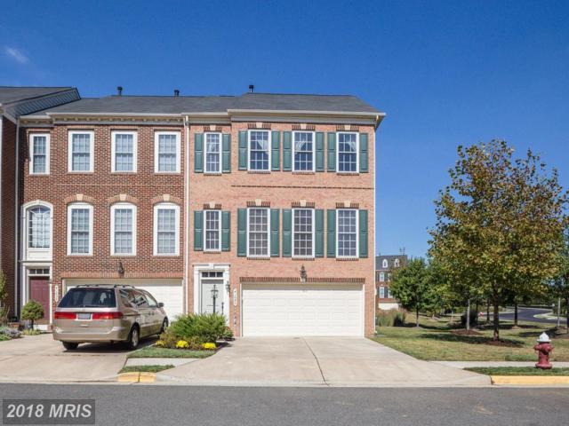 41840 Proverbial Terrace, Aldie, VA 20105 (#LO10137010) :: Circadian Realty Group