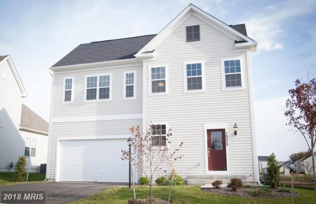 Upper Heyford Place, Purcellville, VA 20132 (#LO10137498) :: LoCoMusings