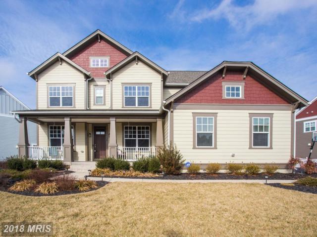 24620 Lavender Grove Drive, Aldie, VA 20105 (#LO10137713) :: Circadian Realty Group