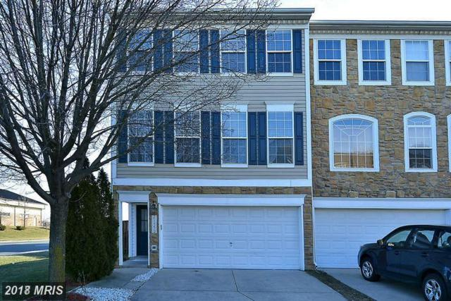 21750 Flora Springs Terrace, Ashburn, VA 20147 (#LO10137853) :: The Putnam Group