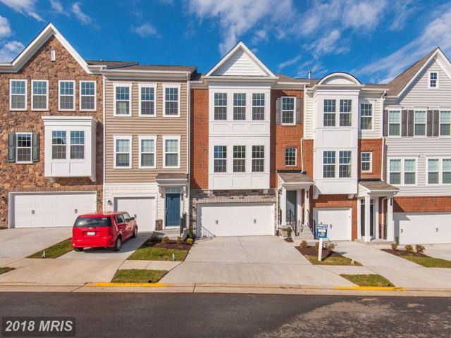 44970 Bishop Terrace #0, Ashburn, VA 20147 (#LO10137869) :: Pearson Smith Realty