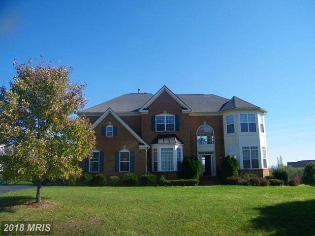 22362 Dolomite Hills Drive, Ashburn, VA 20148 (#LO10137964) :: The Putnam Group