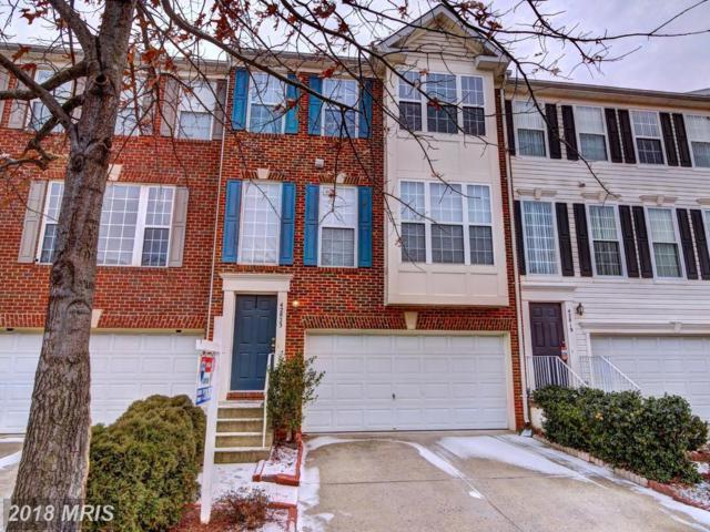 42823 Shaler Street, Chantilly, VA 20152 (#LO10138234) :: The Hagarty Real Estate Team