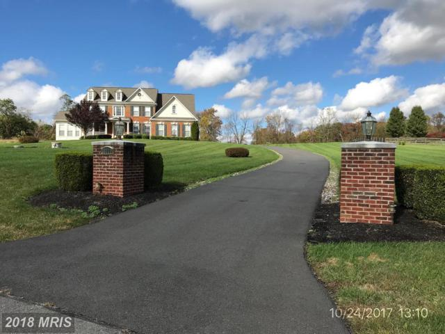 38772 Boca Court, Waterford, VA 20197 (#LO10138236) :: LoCoMusings