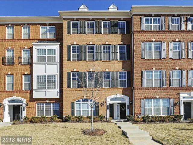 23546 Hopewell Manor Terrace, Ashburn, VA 20148 (#LO10138277) :: The Putnam Group