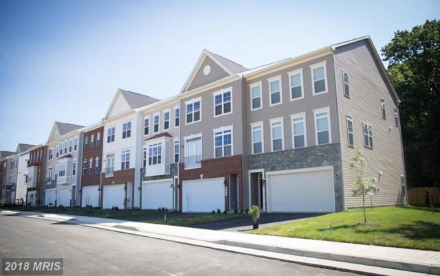 Apsley Terrace, Purcellville, VA 20132 (#LO10138375) :: LoCoMusings