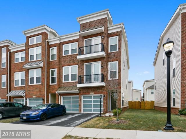 42279 Hampton Woods Terrace, Ashburn, VA 20148 (#LO10138409) :: The Putnam Group