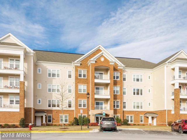 20580 Hope Spring Terrace #103, Ashburn, VA 20147 (#LO10138656) :: The Putnam Group