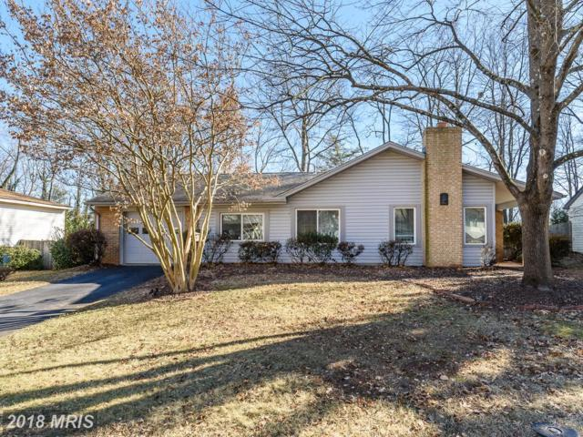 319 Sugarland Run Drive, Sterling, VA 20164 (#LO10138686) :: The Putnam Group