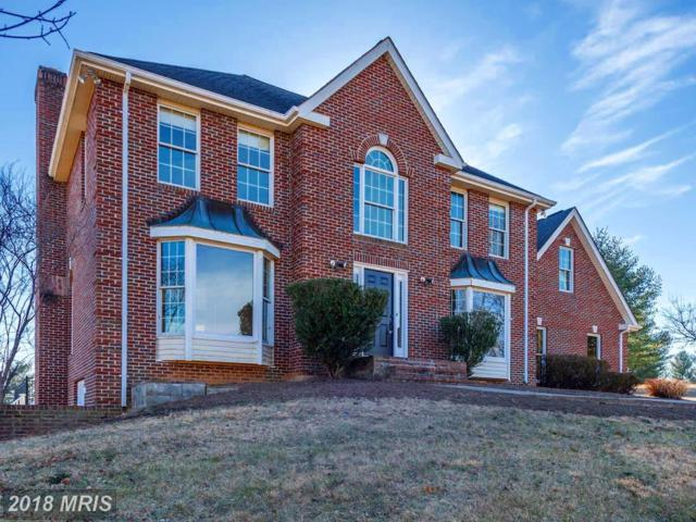 37879 Deerbrook Lane, Purcellville, VA 20132 (#LO10138839) :: LoCoMusings