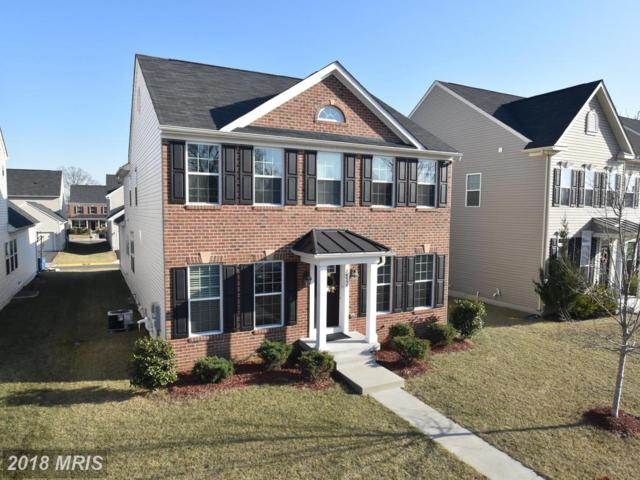 26038 First Frost Way, Chantilly, VA 20152 (#LO10139048) :: The Hagarty Real Estate Team