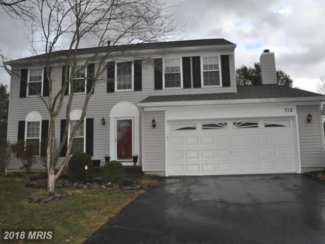 712 Southview Place NE, Leesburg, VA 20176 (#LO10139306) :: The Tom Conner Team