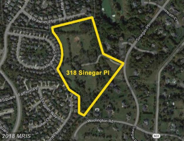 318 Sinegar Place, Great Falls, VA 22066 (#LO10139769) :: The Greg Wells Team