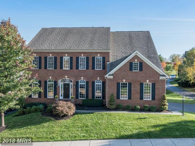 43459 Squirrel Ridge Place, Leesburg, VA 20176 (#LO10143298) :: The Greg Wells Team