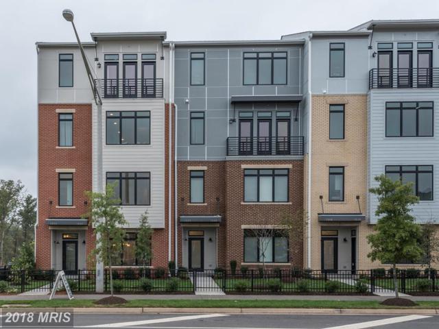 1312 Ribbon Limestone Terrace, Leesburg, VA 20175 (#LO10150325) :: Network Realty Group