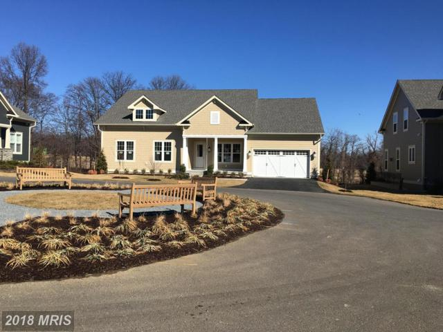 40612 Rosemary Pine Lane, Aldie, VA 20105 (#LO10151816) :: The Bob & Ronna Group