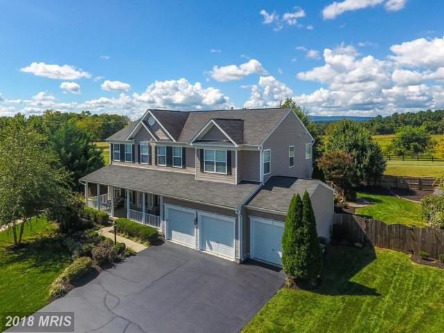 424 Falls Chapel Court, Purcellville, VA 20132 (#LO10152304) :: The Tom Conner Team