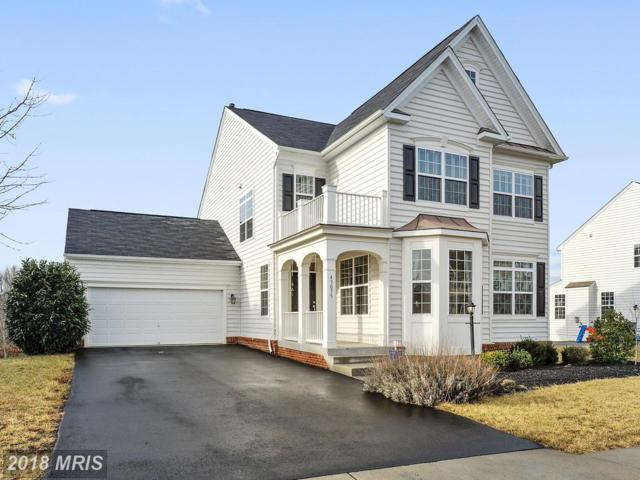 43075 Peters Court, Leesburg, VA 20176 (#LO10154718) :: The Dwell Well Group