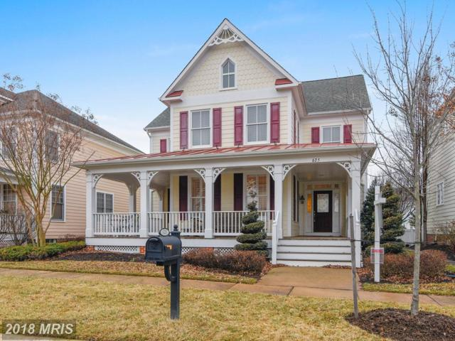 625 Kinvarra Place, Purcellville, VA 20132 (#LO10155066) :: Pearson Smith Realty